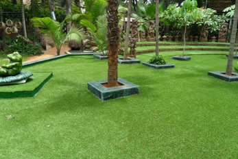Landscape Grass Dealers in Hyderabad